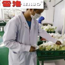 大型果蔬净菜加工雷竞技官网app