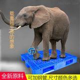 1010川字网格川字网格塑料托盘 1米*1米方型田字栈板