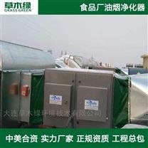 大型油炸锅油烟净化器