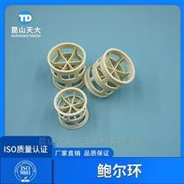 钢铁厂酸再生吸收塔填料PPH材质鲍尔环