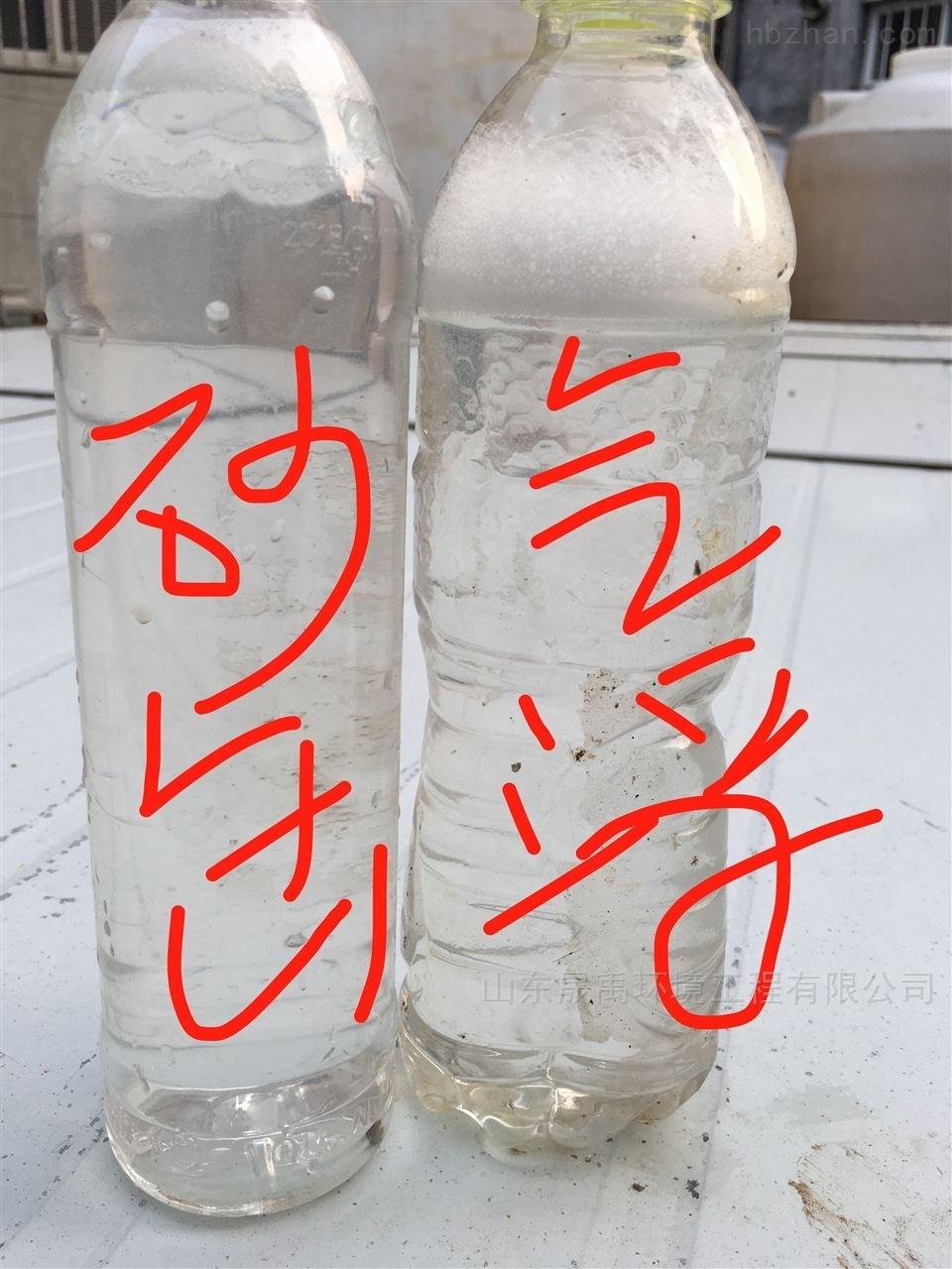 内蒙古 溶气气浮机的结构图 源头生产厂家