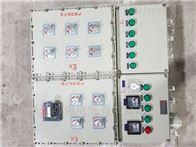 BXK工地现场防爆照明控制开关箱