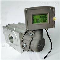 LLGQ-温压补偿天燃气流量计
