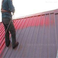 齐全彩钢瓦翻新专用漆屋面钢结构防腐防锈翻新漆