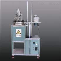 中试级落地式机械搅拌反应釜