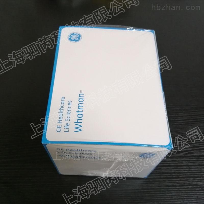 沃特曼AV12 PTFE膜0.45um非针头式过滤器