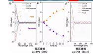 中國科大在二維分離膜的高效選擇性滲透研究取得進展