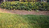 当土壤采样布点遇到遥感技术,会擦出什么样的火花呢?