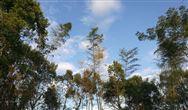 江西:《揮發性有機物排放標準 第一部分:印刷業》