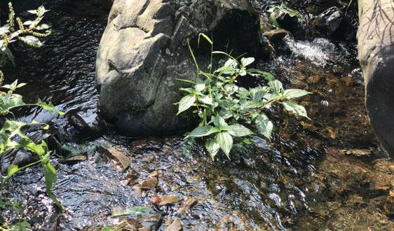 我國地下水污染防治工作進展如何? 生態環境部發言人給出答案
