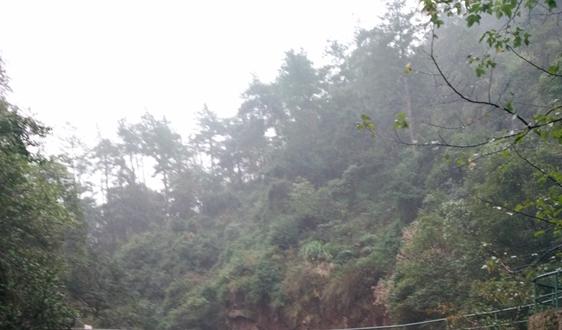 昌邑市生活垃圾焚烧发电PPP项目资格预审结果公布
