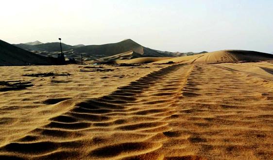 土壤修复产业:今年的市场资金量将超过100亿