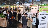 香港站|EP EXPO组委会一行赴港力邀国际买家