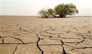 永清betway必威體育app官網:四大項目彰顯土壤修複領域核心實力