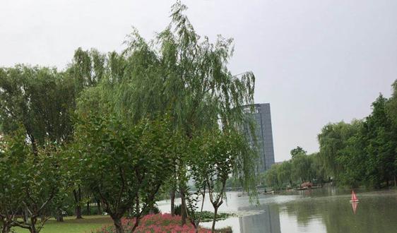 19.36亿!江苏高邮市滨湖移步易景长廊项目资审公告