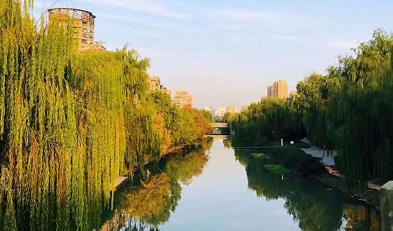 接力2019年暖春行情 博世科预中标1.24亿农村污水处理项目