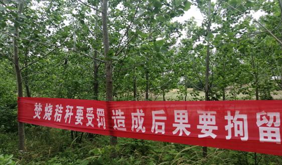 江苏省滨海县五汛镇聚焦大气污染打好持久战