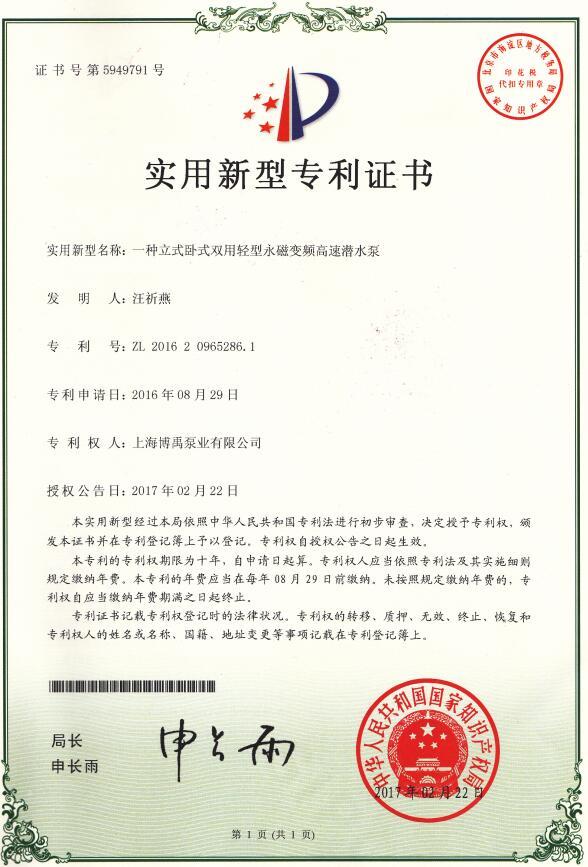 漂浮式潜水泵专利
