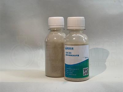 脫氮複合杆菌